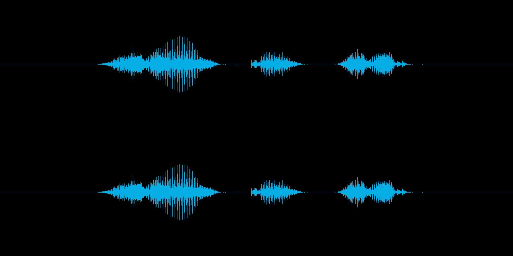 【日】1日の再生済みの波形