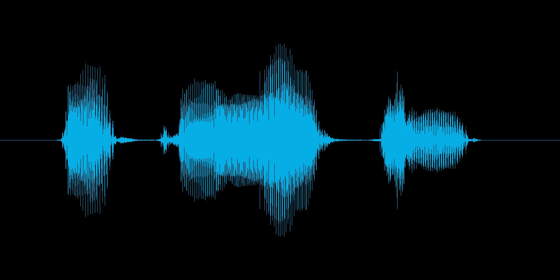 6月(6月・六月)の再生済みの波形