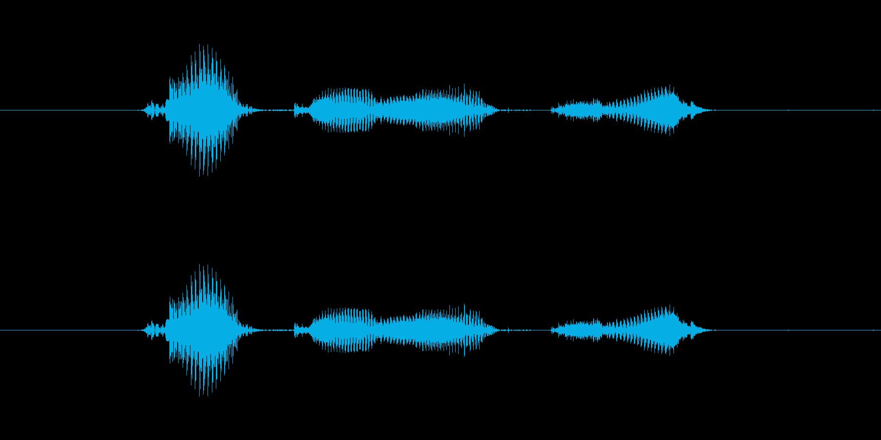 【月】6月の再生済みの波形