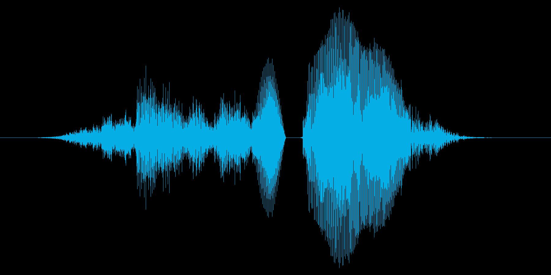 さすがぁ!【ロリキャラの褒めボイス】の再生済みの波形