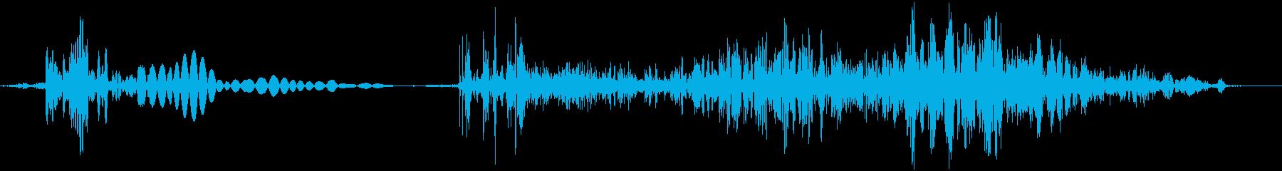 ゴブシュ。斬る・刺す音の再生済みの波形
