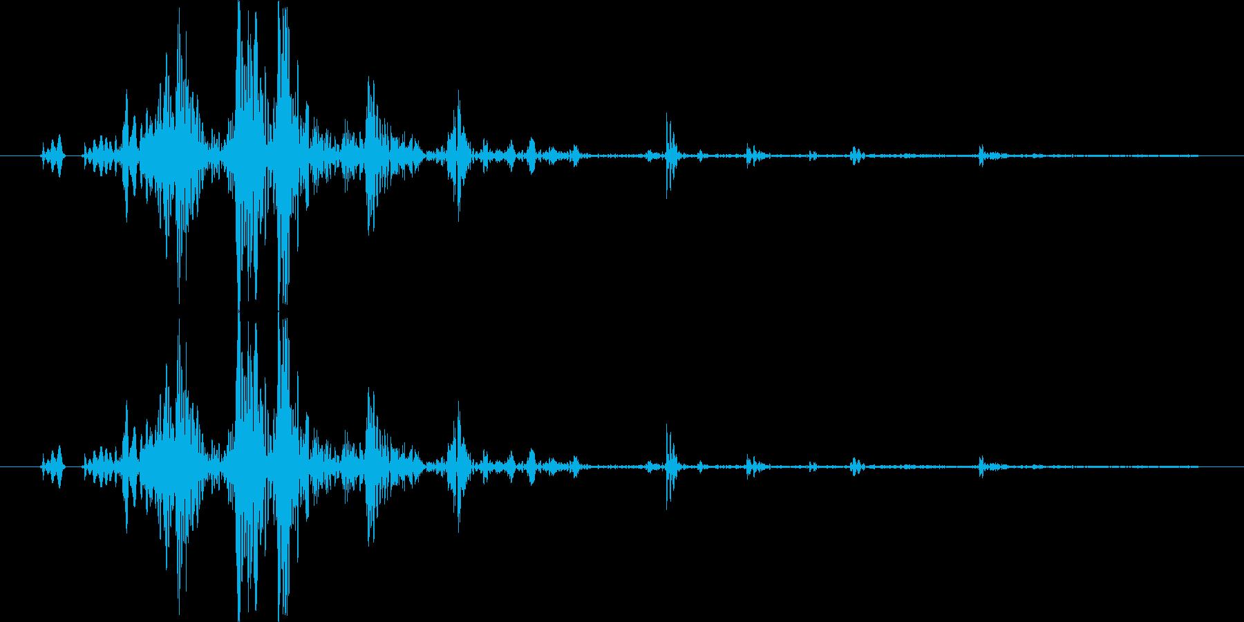 【ゴクン,ごくり】飲む、飲み込む効果音♪の再生済みの波形