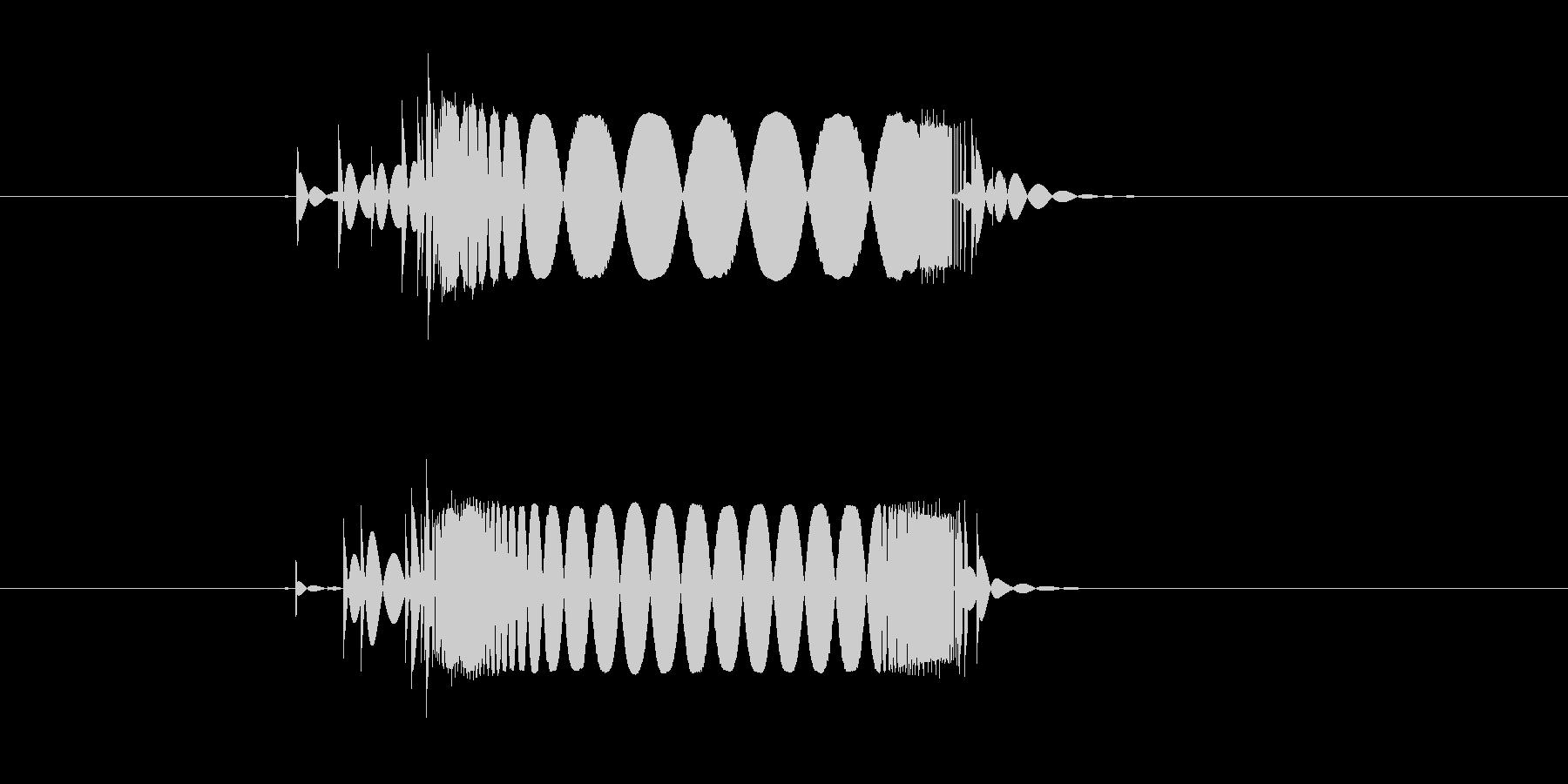 キュイーン(テープ、機械)の未再生の波形