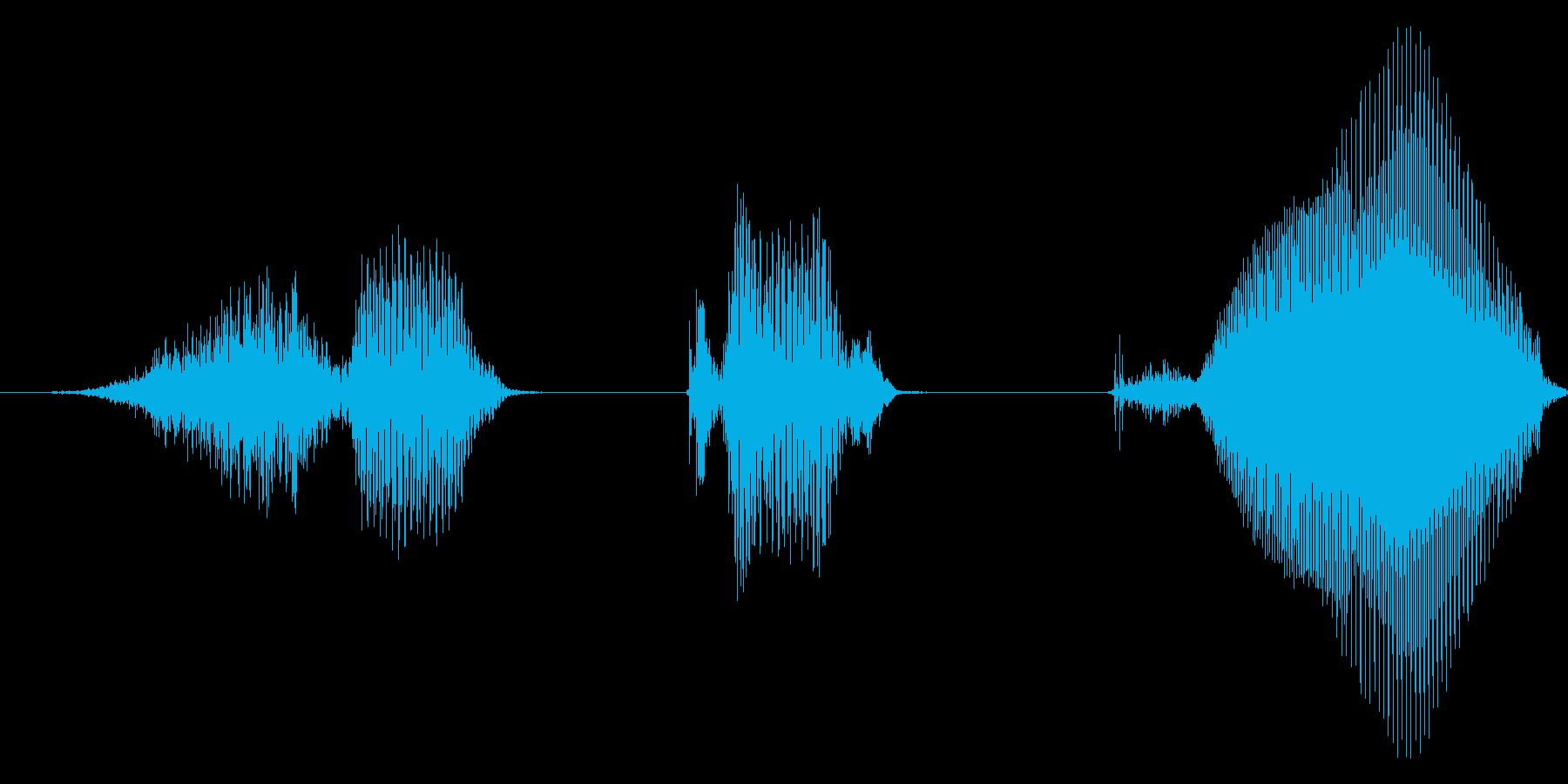 すてき!2【ロリキャラの褒めボイス】の再生済みの波形