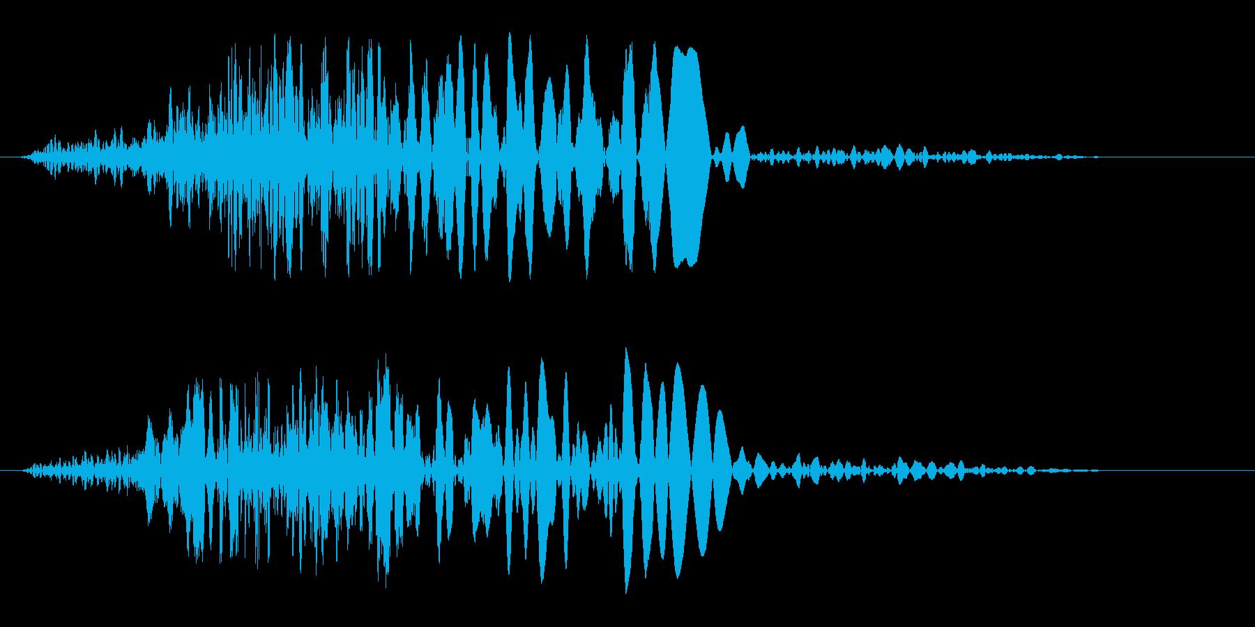 シュルッ!(切れ味のいい刀の切る音)の再生済みの波形