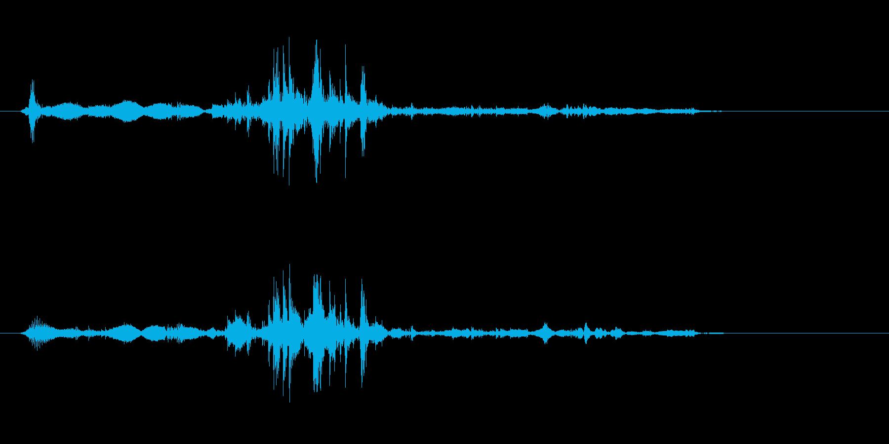 カリッと噛んだ時の音の再生済みの波形