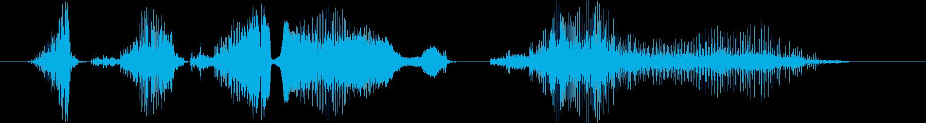 ここで一句(long ver.)の再生済みの波形