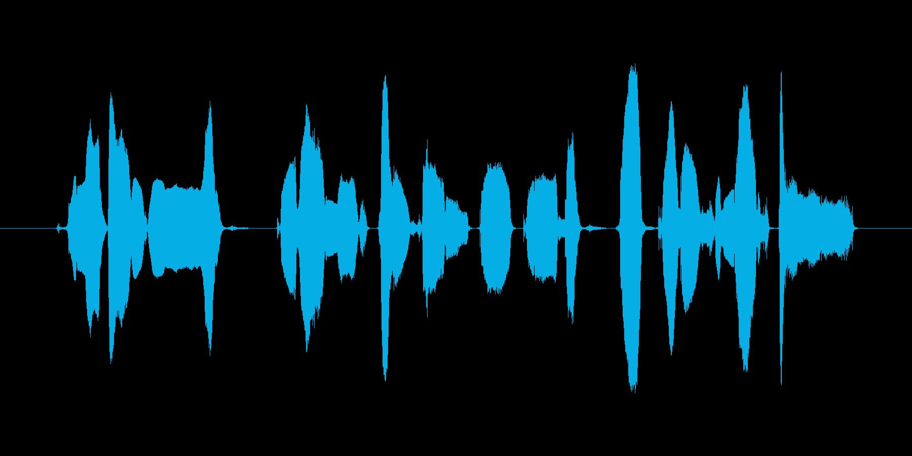 この番組はご覧のスポンサーの提供~の再生済みの波形