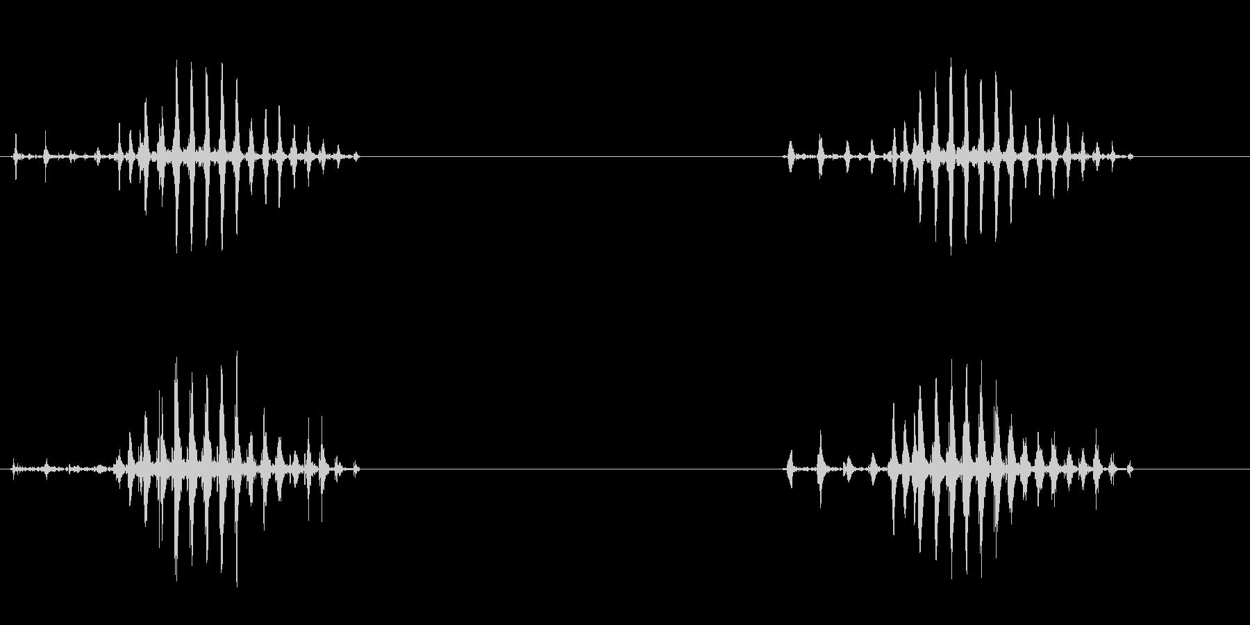 ゲコというカエルの声の未再生の波形