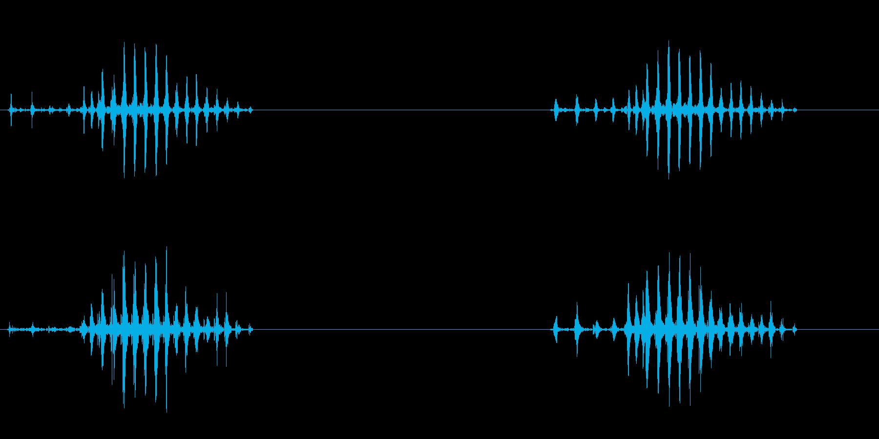 ゲコというカエルの声の再生済みの波形