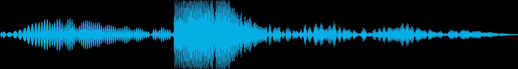 スポ!(引っこ抜く、コルク栓を抜く音)の再生済みの波形