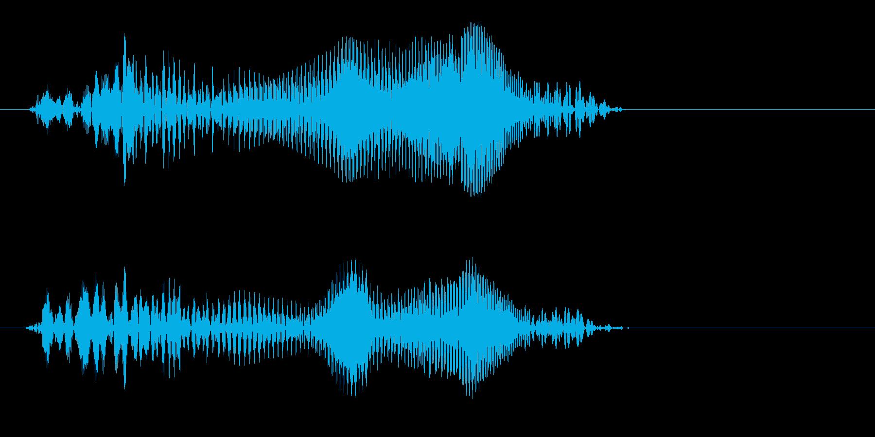 ピョンッ(ファンシーなかわいい効果音)の再生済みの波形