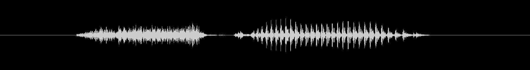 石川(県名)の未再生の波形