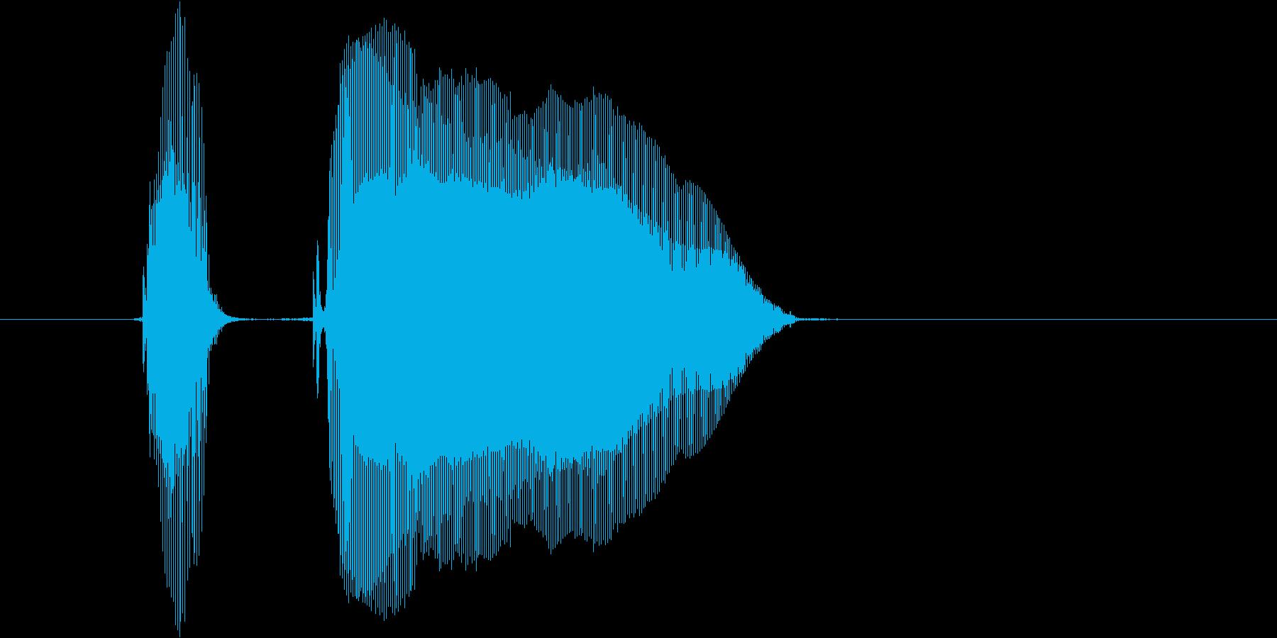 「パコーン」の再生済みの波形