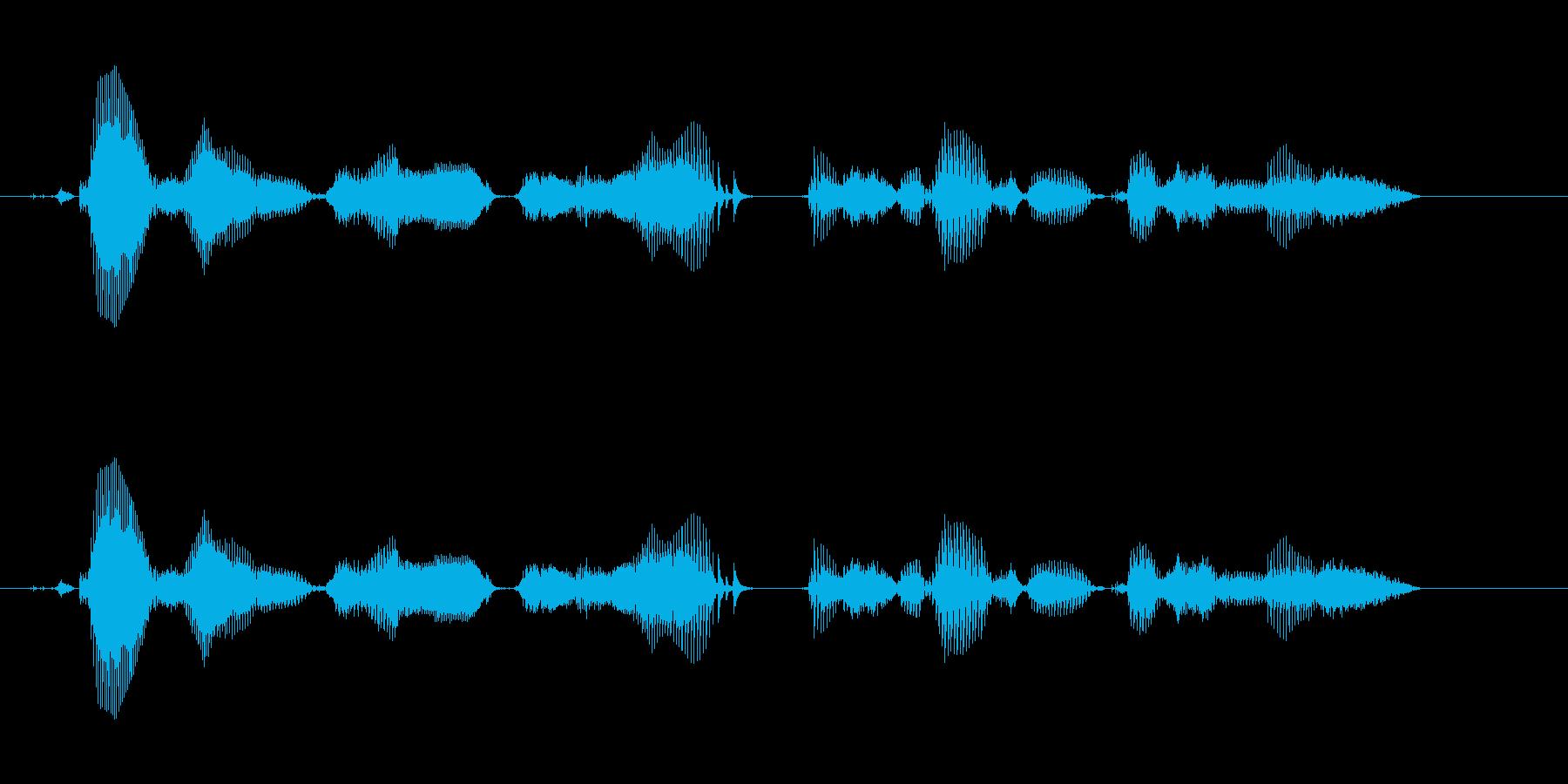 【時報・時間】午前11時を、お知らせい…の再生済みの波形
