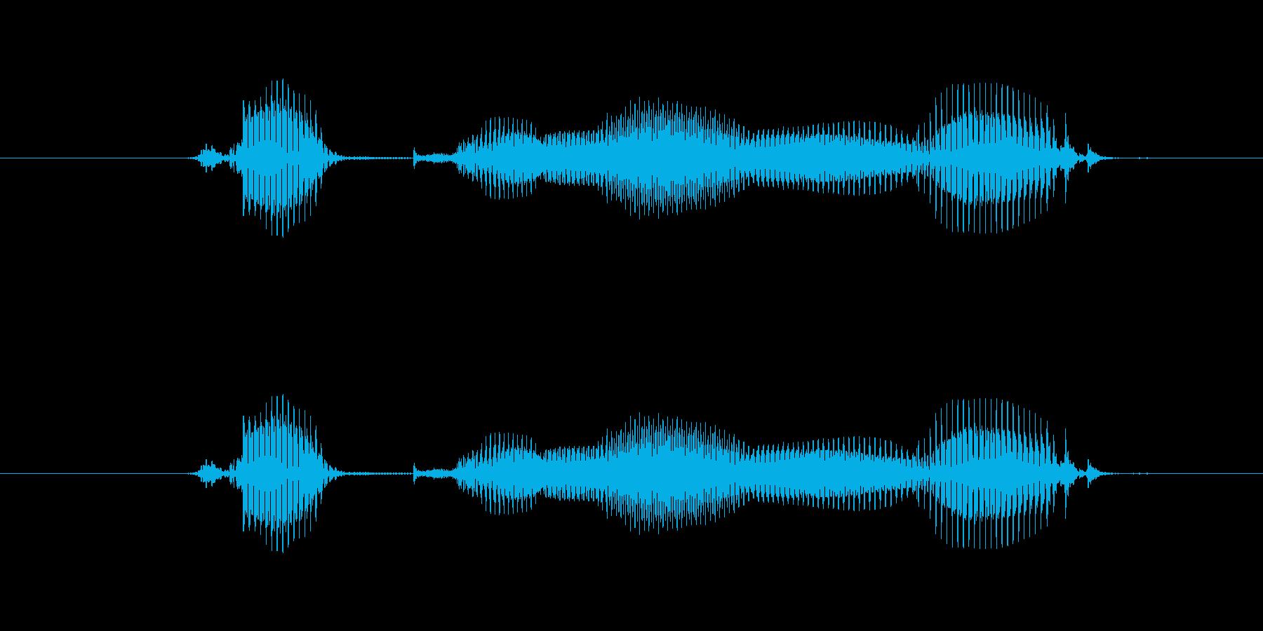 【年数】6年後の再生済みの波形